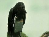 Four Lions (Brother Crow)