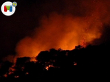 Un incendio forestal arrasa en Barcelona