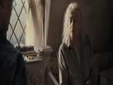 Harry Potter and the Deathly Hallows ? Part 2 (Hallows)